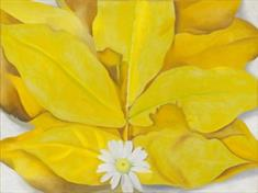 Yellow Hickory Leaves, and Daisy (JPEG)